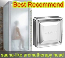 Best Aromatherapy Steam Head For Sale