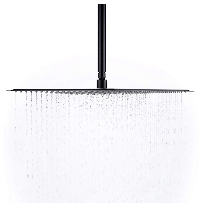 shower head under 100 dollars