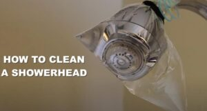 remove limescale from showerhead